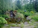 Искусственные водоемы и пруды