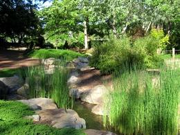 Виды ландшафтного дийзайна - Восточный стиль: японский сад