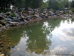 Водоемы - Строительство искусственных водоемов под ключ - Залив воды, декорирование водоема растениями