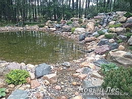 Водоемы - Строительство искусственных водоемов под ключ - Декорирование водоема растениями
